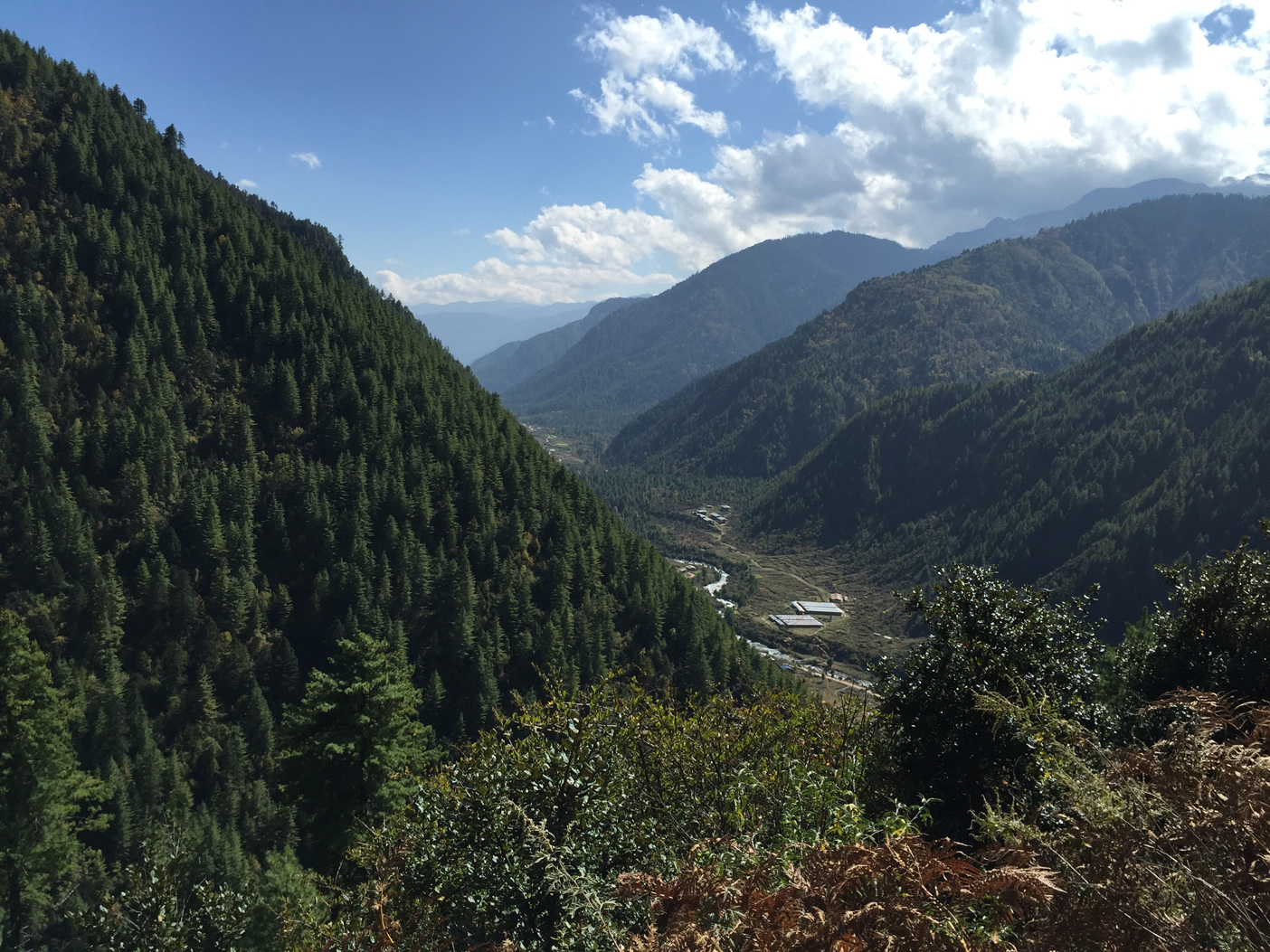 Paro River valley on the way down to last camp