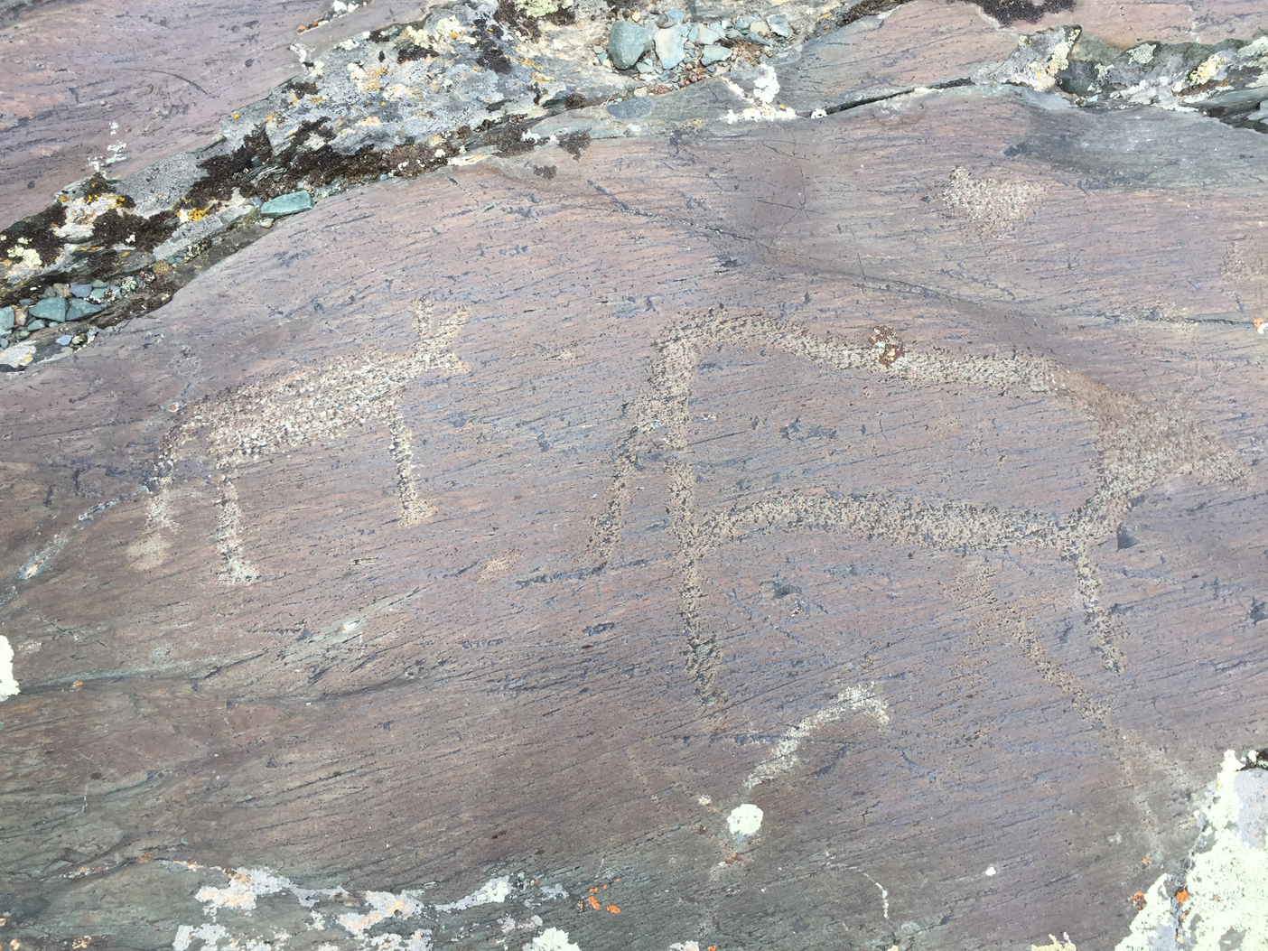 One of many petroglyphs of the Mongolian Altai (a UNESCO World Heritage site)
